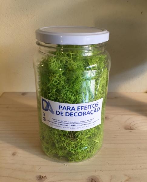 Musgo Verde em Frasco