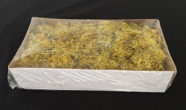 Caixa de Musgo Amarelo