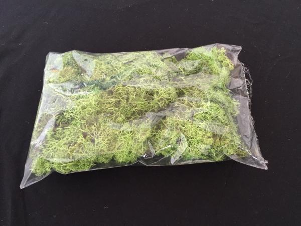 Saco de Musgo Verde Claro